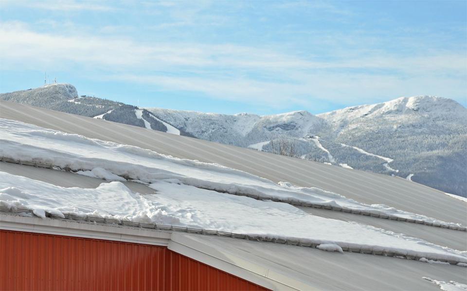 Gallery Alpine Snowguards